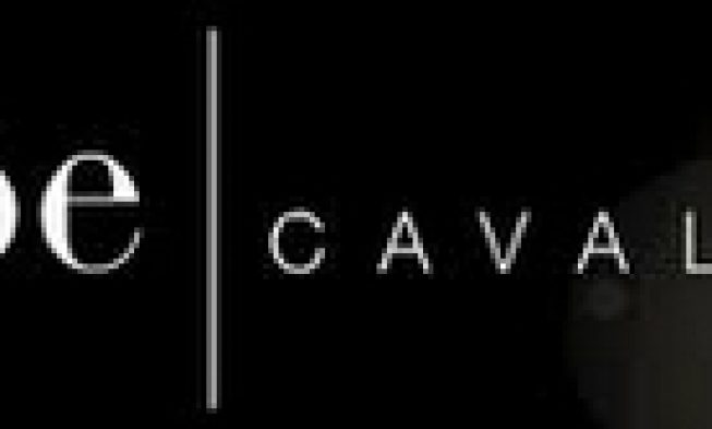 , Успешный мебельный новатор IPE Cavalli