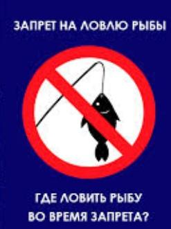 , В чем достоинства рыбалки в Астрахани?